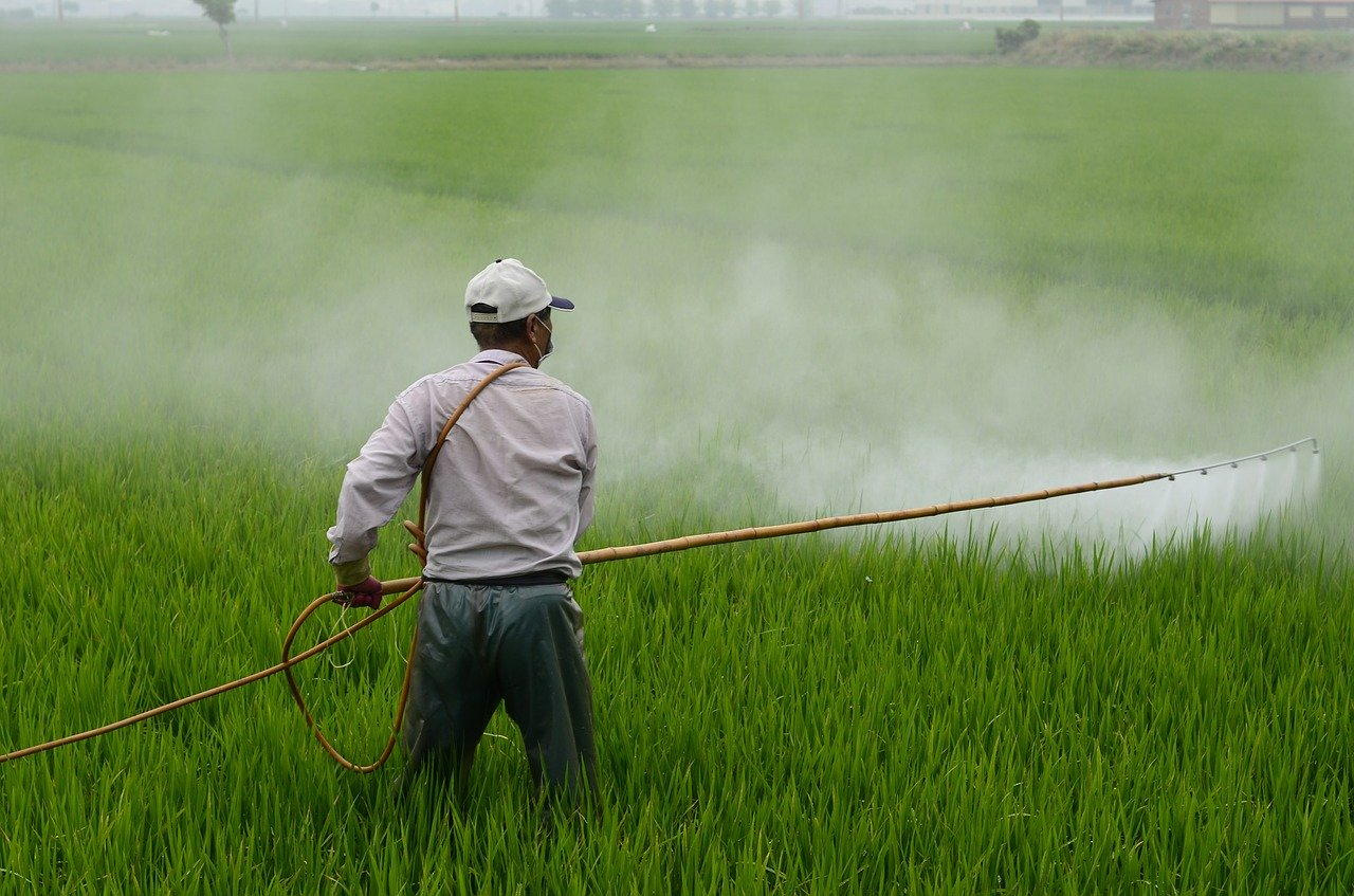 Johnson v. Monsanto: A Case Study on Pesticides and Cancer